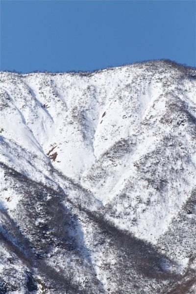 標高1,000m以上は寝雪。真っ白で色のない世界。